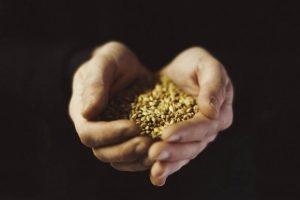 Handbonetierung der Rohstoffe